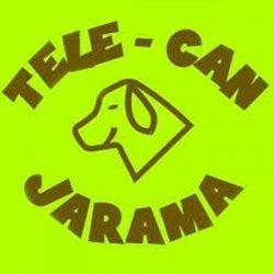 telecan-jarama-patrocinador-Club-MTB-Paracuellos